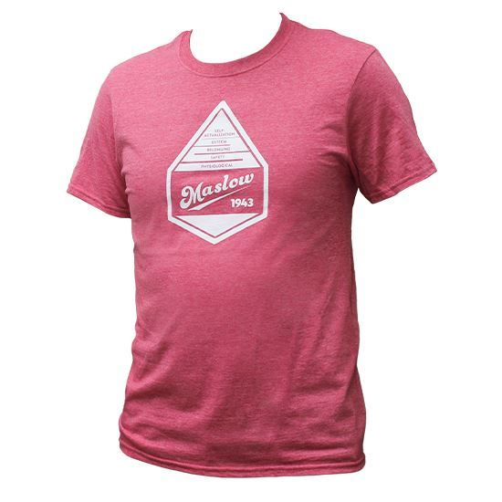 Picture of Maslow's Hierarchy T-Shirt